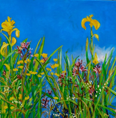 Yellow Flags & Ragged Robin 70 x 70cm