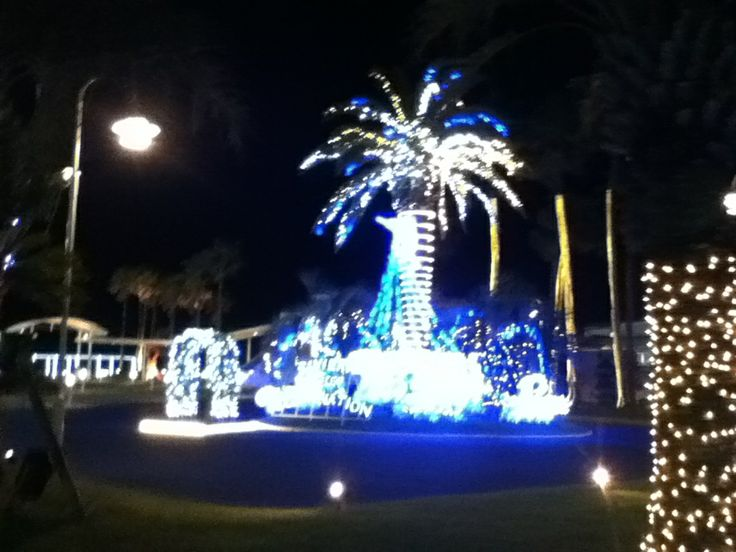 Illumination at Zushi Marina.