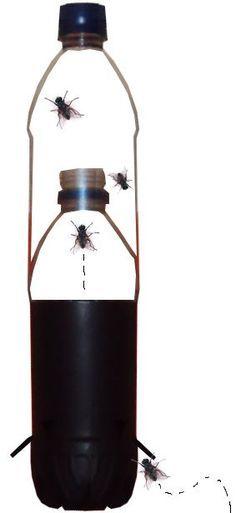 armadinha para afastar as moscas da cozinha