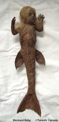 Mermaid Baby. Seriously weird.