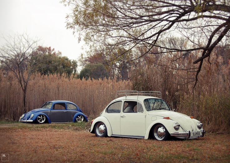 73 & 67 beetle slammed | VW Air-Cooled | Pinterest | Slammed and Beetle