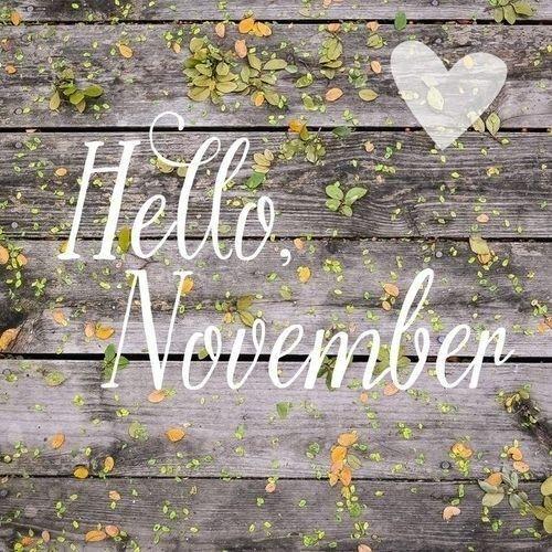 Seja bem-vindo querido Novembro! Que você traga consigo novos recomeços novas esperanças muitos dias de alegria e amor! #novembro #novoscomeços #novasesperanças #diasmelhoresvirão #muitoamorenvolvido #chegandoofimdeano #natalestáquaseaí #anoacabando #adeus2016