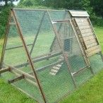 The Dell houses up to 12 bantams or 10 standard sized birds. It has a raised sleeping area and an integral run so that you can keep the chickens enclosed. It also has carrying poles.