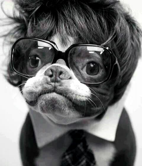 When Barry Manilow and Roy Orbison mated. lol