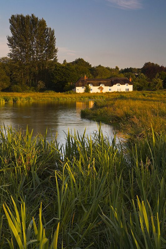 The River Test on Chilbolton Cow Common. Hampshire