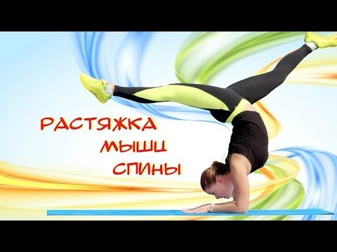 Растяжка спины | Back stretching exercises - YouTube