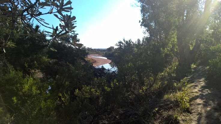 Coolart Wetlands walk and Somer's beach