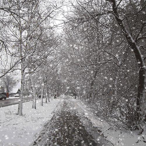 Снег анимация картинка