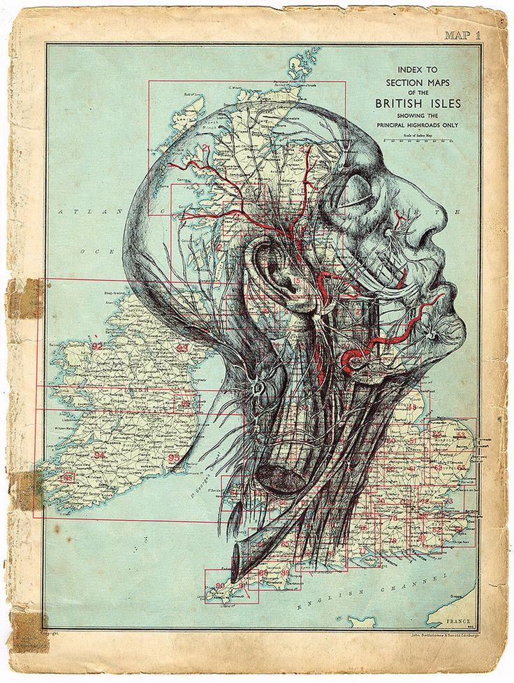https://flic.kr/p/oyW3F4 | 'homosapien fan club' bic biro drawing on an antique map. | www.markpowellartist.com