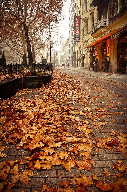 Autumn city street