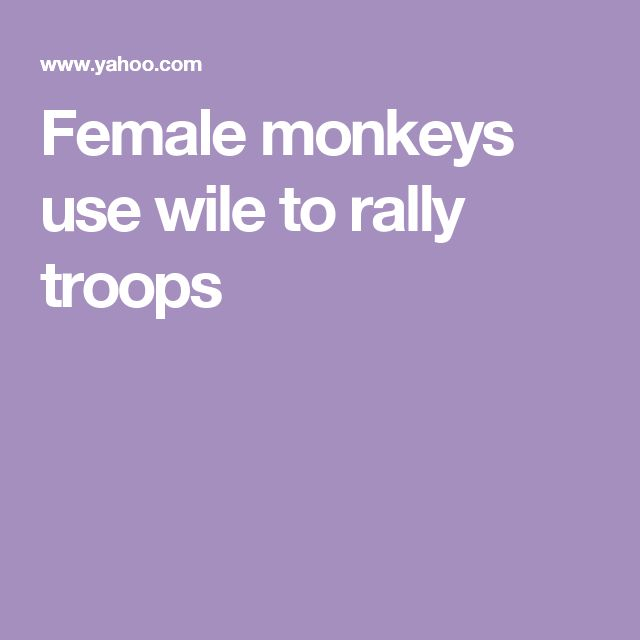 Female monkeys use wile to rally troops