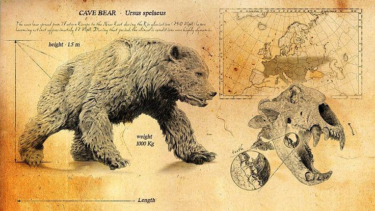 Cave Bear - Ice Age Giants