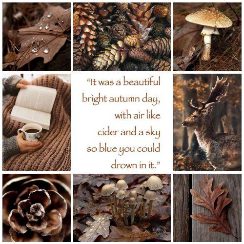 Moodboard autumn fall brown #autumn #fall #brown #herfst #bruin