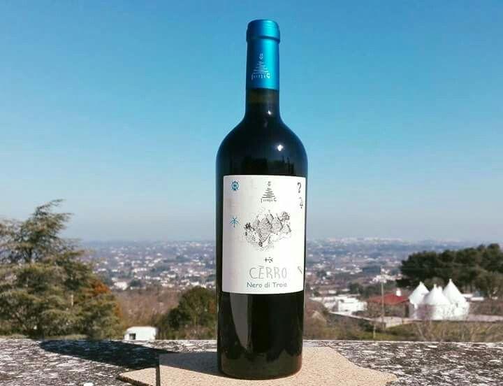 """🍷 #Cerro, 🍾Nero di Troia #Ionis 🍇  🔷""""Ma il #cielo è sempre più #blu!""""   #RinoGaetano🎩 (29 ottobre 1950 –  2 giugno 1981)  #neroditroia #valleditria #cantineionis #martinafranca #apuliawine #puglia #italianwinelovers #enoturismo #winebottle #weareinpuglia #vinoitaliano #instavino #winetasting #madeinitaly #igerspuglia #volgopuglia #winestagram #igersvalleditria #pugliatop #trulli #wine #vino #sky #redwine #accadeoggi"""