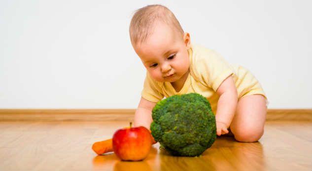 La dieta de los niños listos. Alimentación infantil