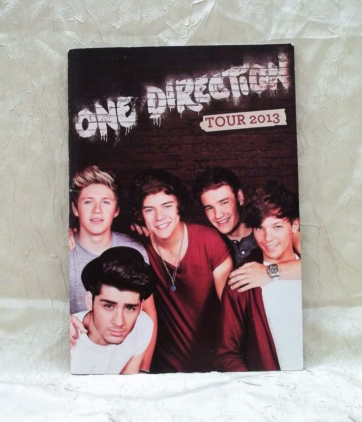 One Direction 2013 Tour Book Program Many Photos Of 1D