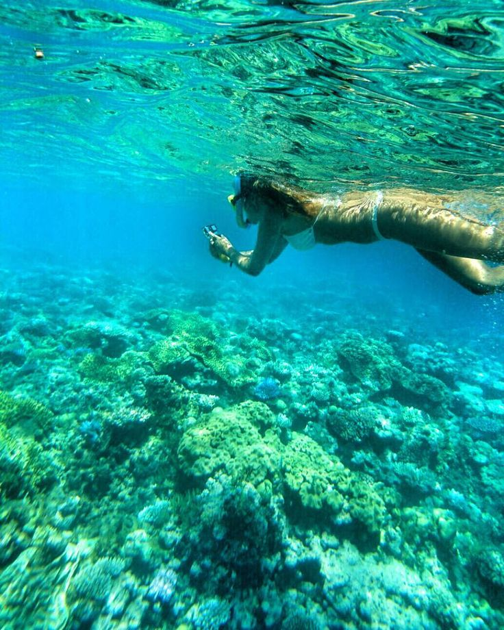 Gran barrera de coral #greatbarrierreef #queensland #australia by danifloressquella http://ift.tt/1UokkV2