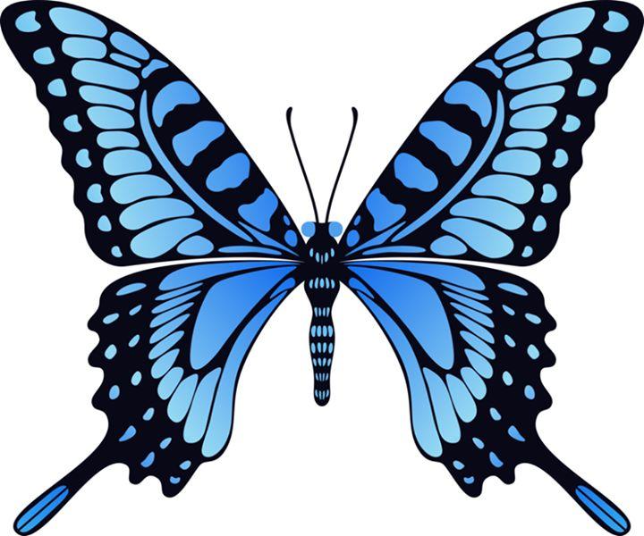 1103 best skoenlappers images on pinterest butterflies paper rh pinterest com animated butterfly clipart