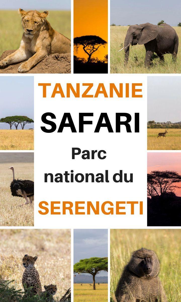 Vous prévoyez un safari en Tanzanie, dans le parc national du Serengeti ? Je vous livre mon récit de voyage de mes quelques jours passés sur place, dans ce beau continent africain. En prime, quelques astuces pour un safari pas cher, trouver un billet d'avion pas cher vers la Tanzanie et d'autres infos ! #tanzanie #afrique #safari #guide #billetavion #serengeti
