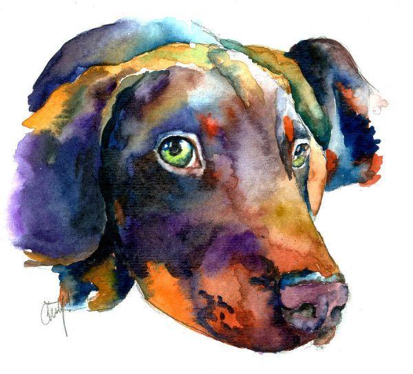 Watercolor Paintings | Watercolor Painting by Christy Freeman - Doberman Watercolor Fine Art ...