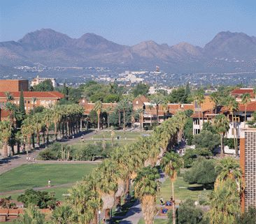 University of Arizona campus, Bear Down Wildcats!