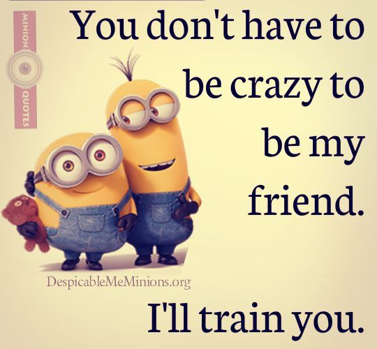 Best Friendship Quotes minions