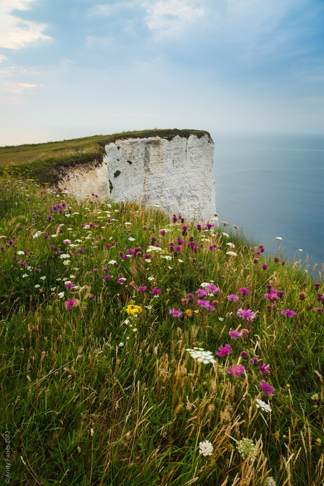 58 Best Out And About In Dorset Images On Pinterest