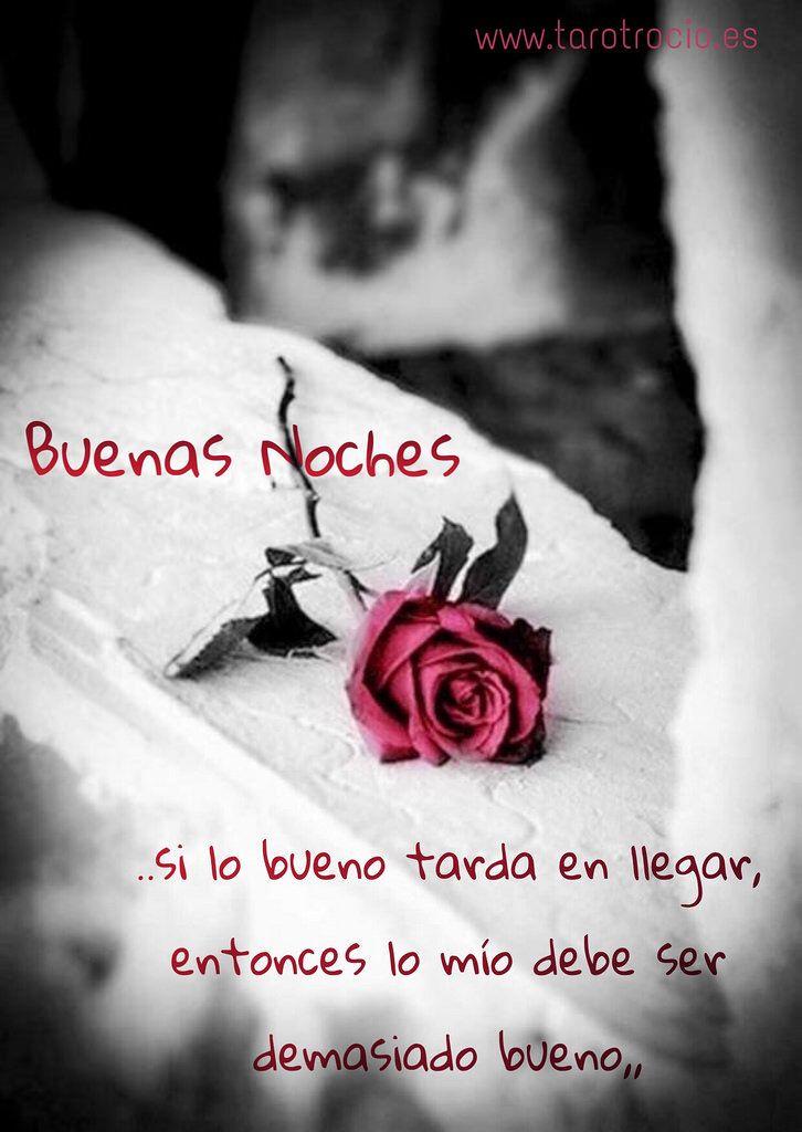 #BUENASNOCHES 💤 #CONSULTASDETAROT #RELACIONOCULTA #FECHASTAROT #FECHASEXACTAS #TAROTGRATIS #TAROTBARATO #TAROTACIERTOS #TAROTRESULTADOS #AMOROCULTO #FUTUROLOGIA #VIDENTESENSITIVA #MEDIUMNATURAL #ESPIRITISMO #SIONO #RITUALESDEAMOR #ARQUETIPO #TAROT #ES