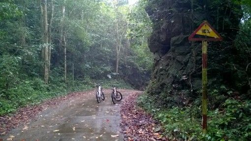 Cuc Phuong National Park Bike Ride