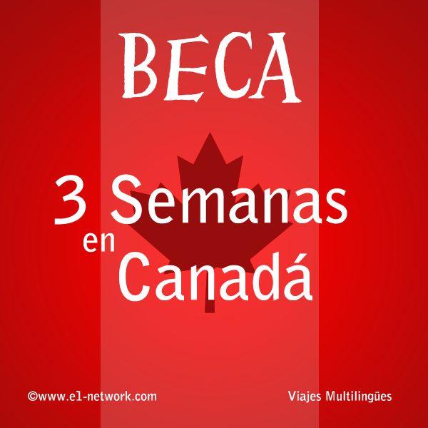 QUEDAN SÓLO 5 DÍAS para postular a la #beca para estudiar inglés en #Canadá Postula en: http://www.e1-network.com/articles/beca_canada/pre_canada.html  #beca #ingles #canada #perfeccionar #estudiar #viajar #vacacionar #viaje