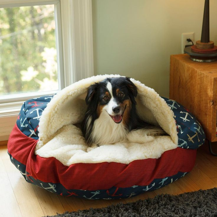 Your dog deserves a comfortable place to sleep that they can call their own. We researched the best dog beds for your fur friend in 2018. Check them out! | Healthy Paws Pet Insurance
