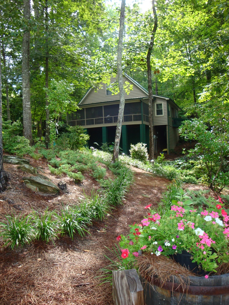 Lake Cabin Outdoors Landscape Ideas Pine Needle Ground Cover