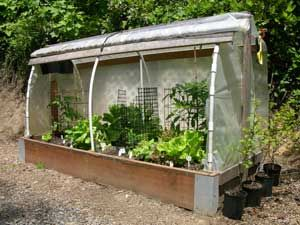 DIY: Raised Bed Cloche Tutorial - eat from your garden all year round with this in your backyard.