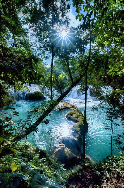 Peering through the trees, looking down at Agua Azul in Chiapas, Mexico. Near the Mayan ruins of Palenque.