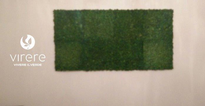 I quadri vegetali #stabilizzati,molto simili ai giardini verticali,possono rallegrare le pareti di casa, ufficio, hotel, ristoranti e bar, showroom, ospedali, palestre, aeroporti, centri commerciali ecc., anche sotto forma di pareti divisorie. Una soluzione naturale per quei luoghi in cui non esistono le condizioni per curare piante vere ma si ha bisogno di arredare e rendere gradevole un ambiente con un effetto suggestivo.    #lichene #greenwall #moss #verticalgreen #stabilizzato #giardino