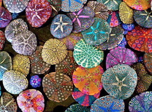 painted sand dollars: Sea Shells, Paintings Sands Dollar, Paintings Rocks, Paintings Stones, Color, Sea Urchins, Seashells, Seaurchin, The Sea