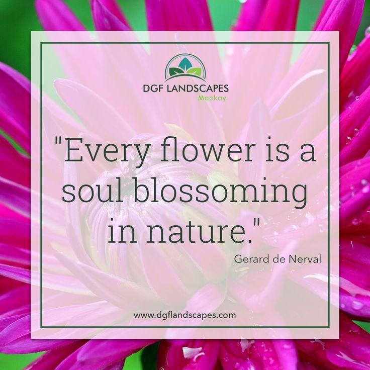 """""""Every flower is a soul blossoming in nature."""" - Gerard De Nerval #TuesdayTruth #FlowerQuote #Gardens #GardenQuotes"""