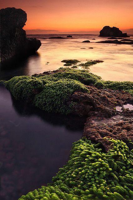 Mengening Beach, Canggu, Bali, Indonesia. #PINdonesia