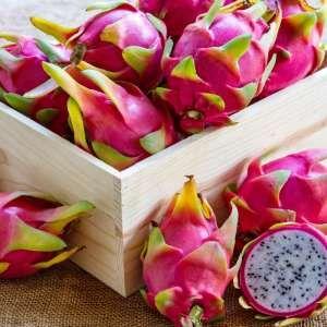 Fit mit BLICK: Farbig, gesund, lecker – aber... Wie ökologisch sind exotische Früchte? - Blick