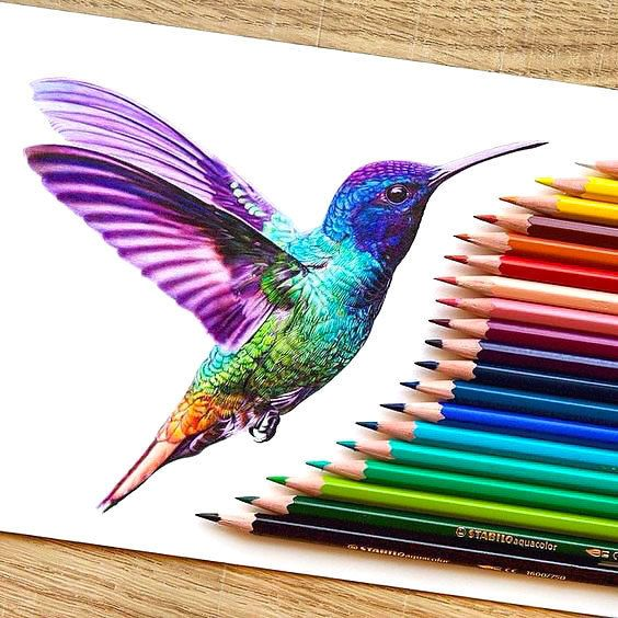 The best humming bird ever. Gorgeous colorful design. Style: Realistic. Color: Colorful. Tags: Best, Amazing, Beautiful