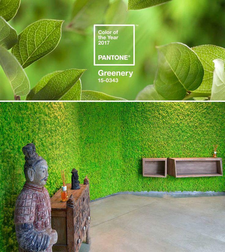 """Il colore Pantone 2017 è un verde """"erba"""" che l'azienda americana Pantone ha chiamato greenery e che il prossimo anno influenzerà gli abbinamenti, la moda, il design, l'arredo casa, l'architettura, le tendenze beauty e molto altro. Si tratta di una sfumatura vivace, con una punta di giallo, sinonimo di un desiderio di riconnettersi alla natura, che va a contrapporsi ai colori dello scorso anno, più rassicuranti e vicini alla sfera affettiva. #green #pantone #newyear #nature #greenery…"""