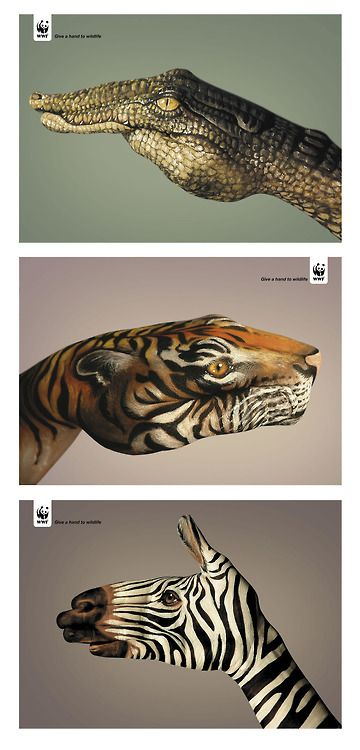 Give a hand to Wildlife advertising design for WWF - Crocodile/Tiger/Zebra - Tumblr