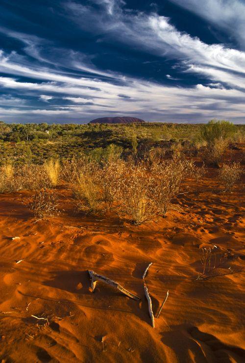 culturalcrosspollination:    Australian Landscape