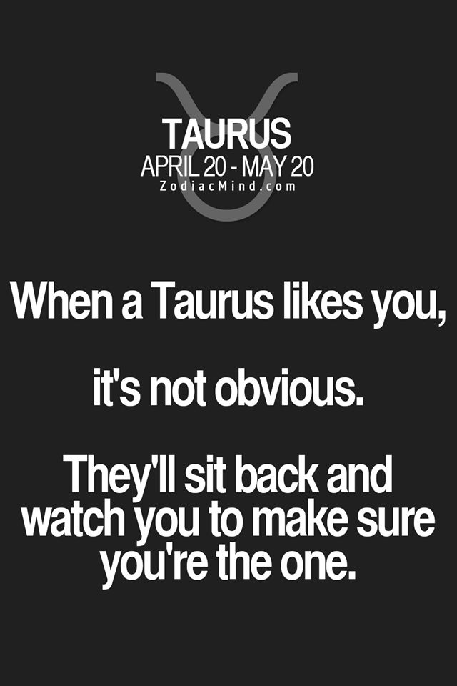 Taurus Quotes Fascinating 64 Best Taurus Quotes Images On Pinterest  Taurus Astrology And