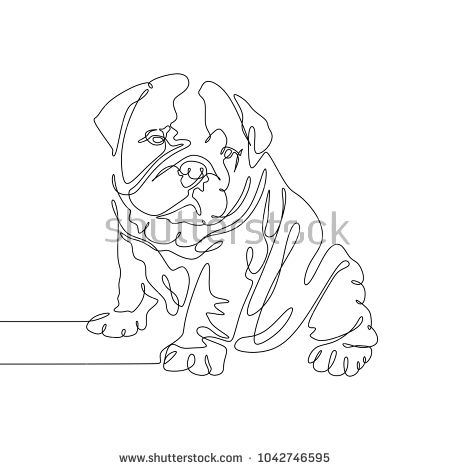 Continuous line art drawing. Bull dog Puppy.