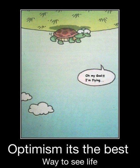 Your daily dose of :): Thinking Positive, Funny Pics, So Cute, Funny Pictures, Points Of View, Quote, Life Lessons, Optimism, Turtle