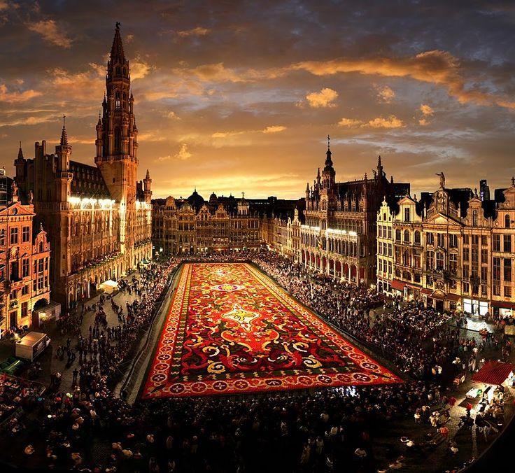 belgiumPhotos, Carpets Flower, Europe, Favorite Places, Flower Carpets, Brussels Belgium, Beautiful Places, Grand Places, Travel