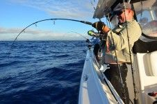 the guys managed their first dogtooth and GT's as well as wahoo, red bass, jobfish and yellowfin.