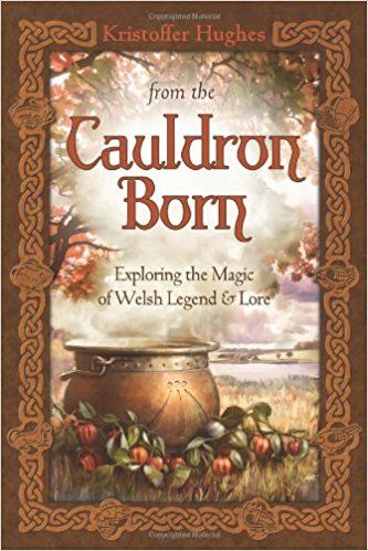 376 best books images on pinterest books to read herbal medicine from the cauldron born exploring the magic of welsh legend lore amazon fandeluxe Image collections