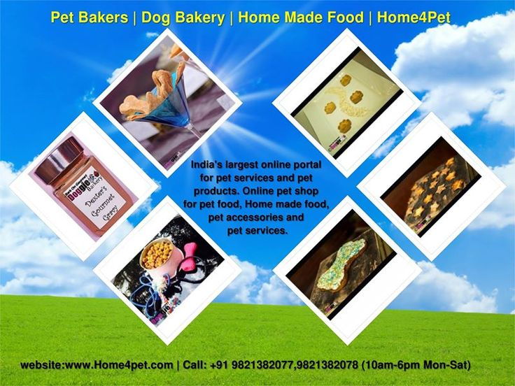 http://home4pet.com/Pet-Food/Pet-Bakers Pet Bakers, home made food and cackes is avelaible on Home4Pet. India's largest online portal for pet services and pet products.  Online pet shop for pet food, Home made food, pet accessories and pet services.